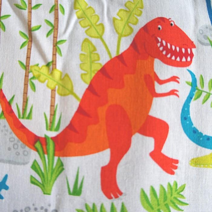 Blanket-Junglesaurs-1-700x700